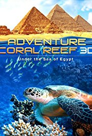 Adventure Coral Reef 3D Under the Sea of Egypt